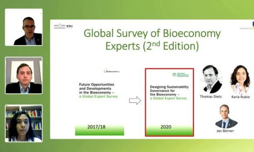 Presentation of the global expert survey on Designing Sustainability Governance for the Bioeconomy at the Global Bioeconomy Summit 2020