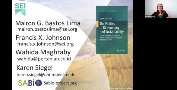 """Book launch panel debate """"The Politics of Bioeconomy and Sustainability"""" by Mairon Bastos Lima, Stockholm Environment Institute"""